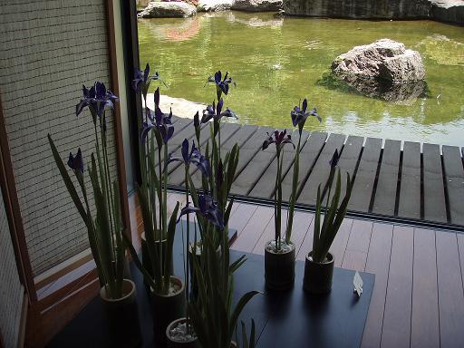 クレイの花3.jpg