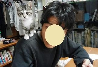 ポッキーちゃん(ソルちゃん)3.jpg