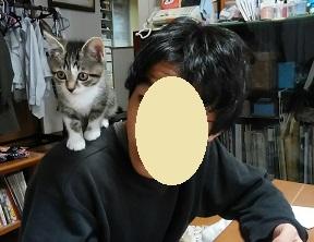 ポッキーちゃん(ソルちゃん)6.jpg