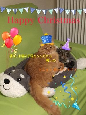 リッキーとミニョンのクリスマス2017.jpg