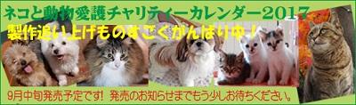 猫堂さんのカレンダー.jpg