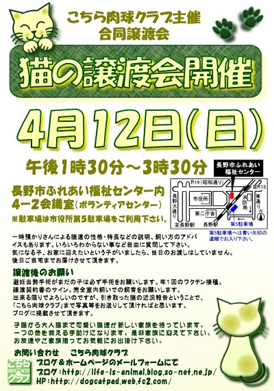 第13回譲渡会チラシ02.jpg