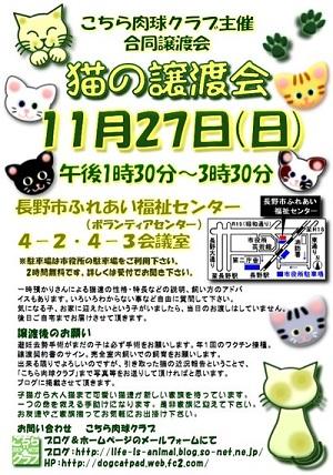11月の譲渡会.jpg