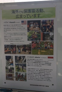 IMG_9091.JPG