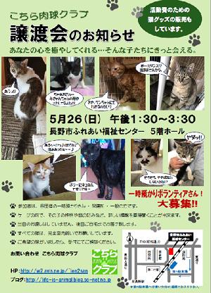 2019年5月26日譲渡会チラシブログ用.png