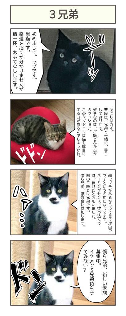 3兄妹漫画.jpg