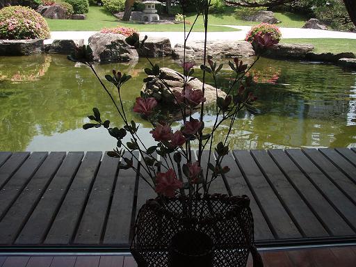 クレイの花2.jpg
