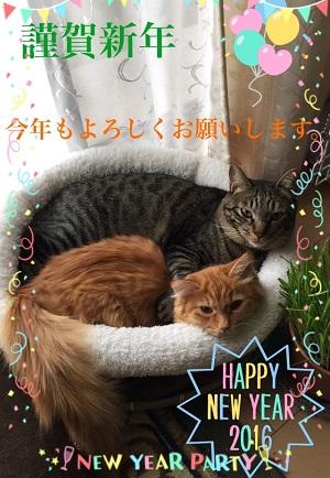 リッキー君とミニョン君新年.jpg