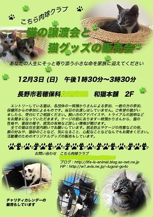 譲渡会チラシ臨時ブログ用.jpg
